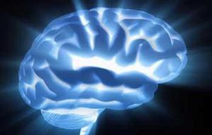 引发癫痫病的原因是什么