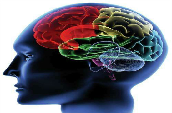 癫痫疾病的诊断依据有哪些