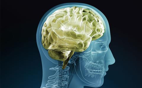 额叶癫痫有哪些常见的发作症状