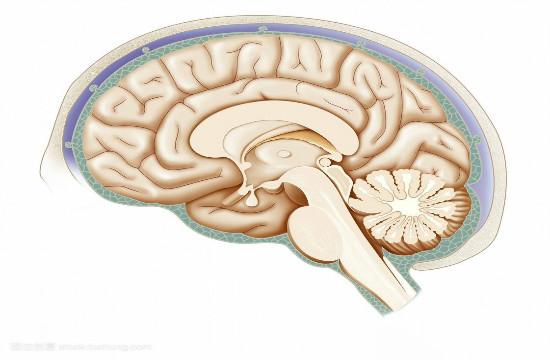 老年癫痫并的常见病因有哪些